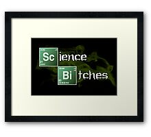 Science Bitches Framed Print