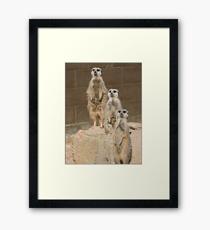 Uno Dos Tres Framed Print