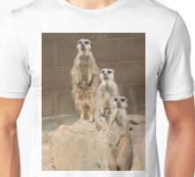 Uno Dos Tres Unisex T-Shirt