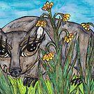 Wanda the Wombat by kewzoo