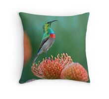 Proud as a .............. Throw Pillow