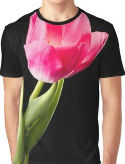 Red Tulip on Black Background Graphic T-Shirt