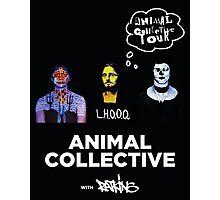 Animal Collective Photographic Print