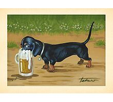 Just One Long Drink - For Doxies lovers Photographic Print