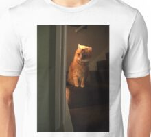 Waiting cat Unisex T-Shirt