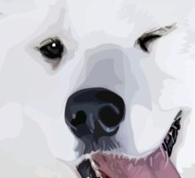 Pretty Samoyed Dog Sticker
