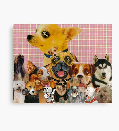 Dogs are Fun Canvas Print