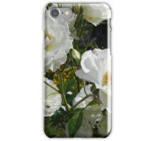 Roses3 iPhone Case/Skin