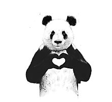Lovely Panda Photographic Print