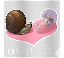 Snail Love is Blind Poster