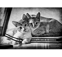 A couple of tots Photographic Print