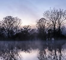 Morning Mist by Fred McKie