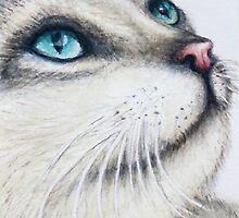 """BLUE""  by ShireenJackson"