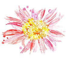Pink Mixed Media Flower Photographic Print