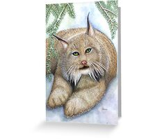 """""""LINUS""""  Canadian Lynx, First Snow Greeting Card"""