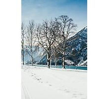 Trees By The Winter Lake Photographic Print