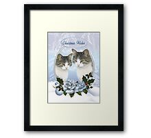Two Christmas Cat's With Snow Ice And Blue Roses With Holly  Framed Print