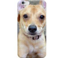 Well Hi There! iPhone Case/Skin