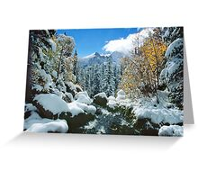 Tyndall Creek Greeting Card