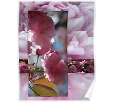 Spring Blossom Collage Poster