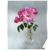 Deep Pink Roses in a Clear Glass Vase Poster