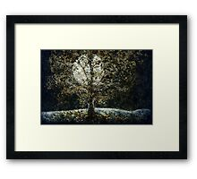 Full Moon Fall Framed Print