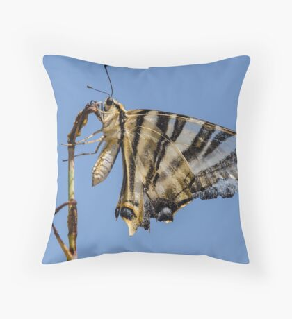 Butterfly against a blue sky Throw Pillow