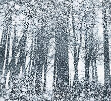 Snow Forest by Andrew Bret Wallis
