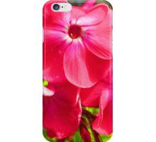 Vivid Pink Phlox iPhone Case/Skin