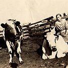 farm friends by dkzn