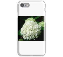 Hydrangea Blossoms iPhone Case/Skin