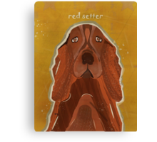 the red setter Canvas Print