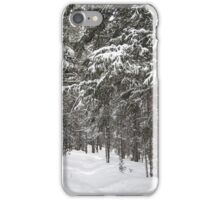 Woods in Winter iPhone Case/Skin