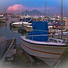 The Vesuvius and Mergellina / Naples / Italy by Rachel Veser