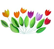 Seven colorful tulips Photographic Print