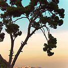 View on Naples / Italy ~ Veduta su Napoli by Rachel Veser