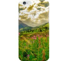 Canadian Rocky Mountains  iPhone Case/Skin