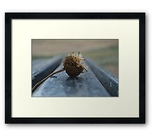 Here and.. There Framed Print