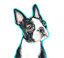 Boston Terrier Dog Drawing Photographic Print