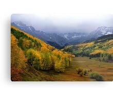 Little Meadow of the Sublime Metal Print