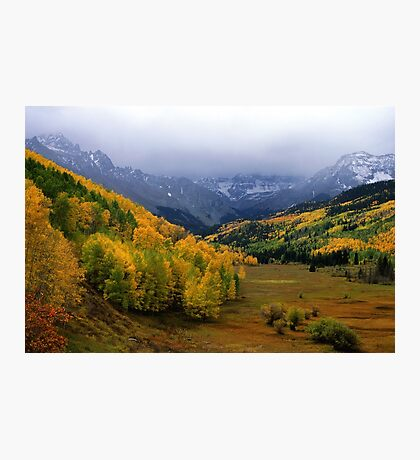 Little Meadow of the Sublime Photographic Print