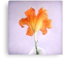 Orange Daylily on a Light Purple Background Canvas Print
