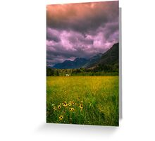 Meadow in the mountains  Greeting Card