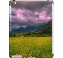 Meadow in the mountains  iPad Case/Skin