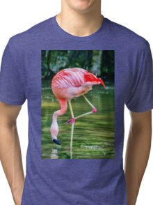Pretty Pink Flamingo having a drink of water Tri-blend T-Shirt