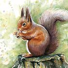 Squirrel Watercolor Painting, Forrest Animal by Olga Shvartsur