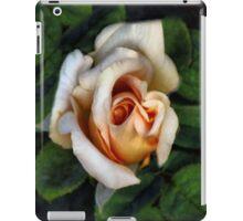 Peaches and Cream iPad Case/Skin