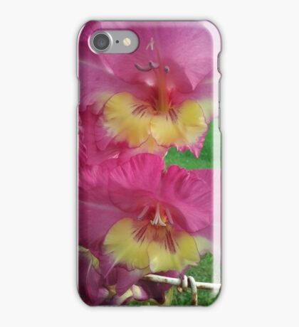 Pink and Yellow Gladiolus iPhone Case/Skin