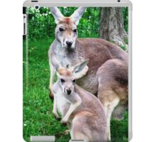 Seeing Double (Again)... iPad Case/Skin