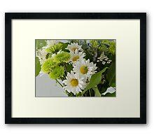 White daisies Framed Print